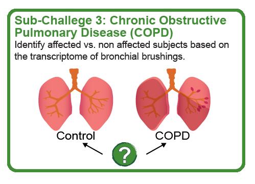 COPD subchallenge
