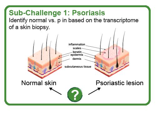 Psoriasis subchallenge