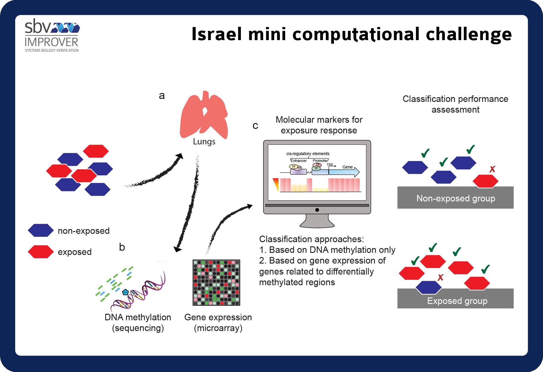 Israel mini challenge