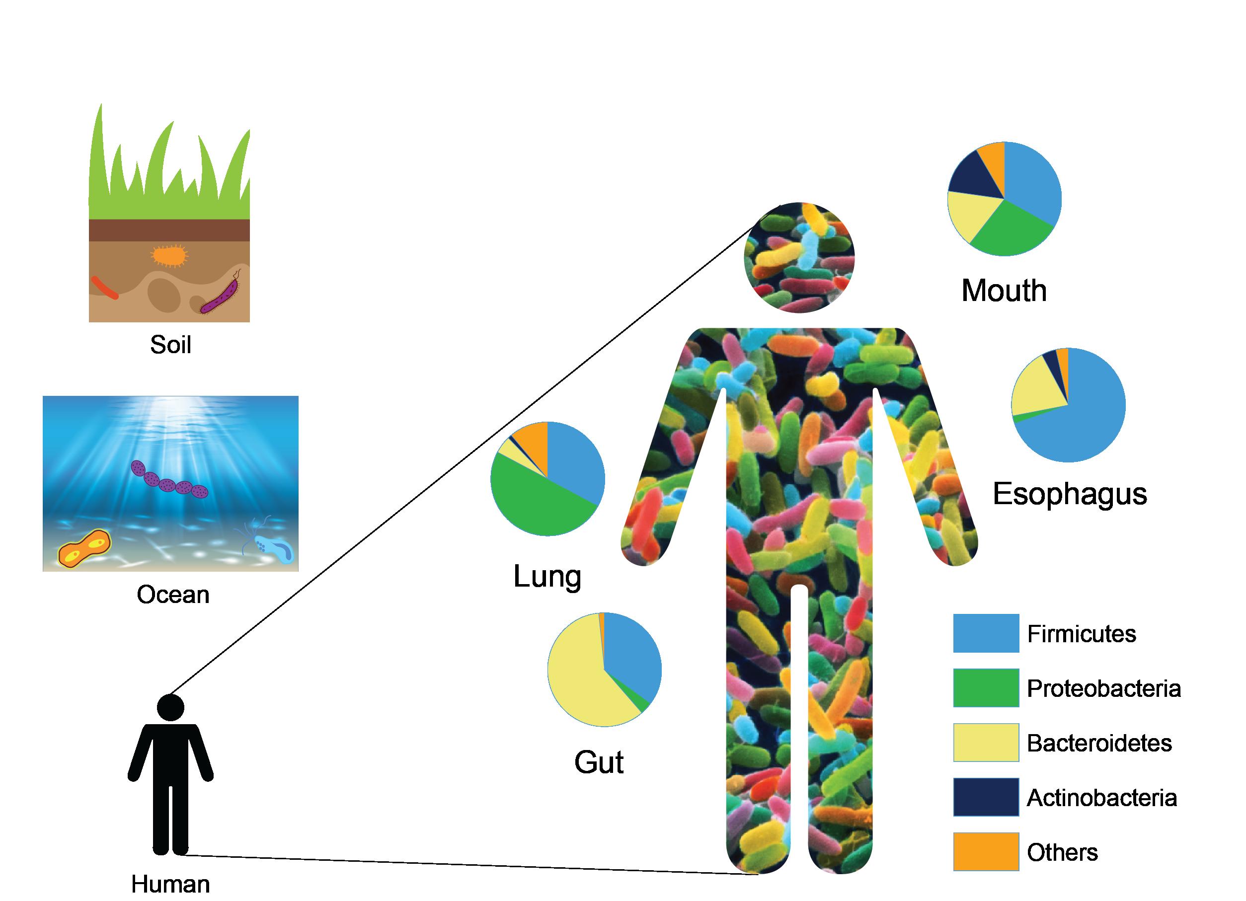 Microbiomics_Figure1