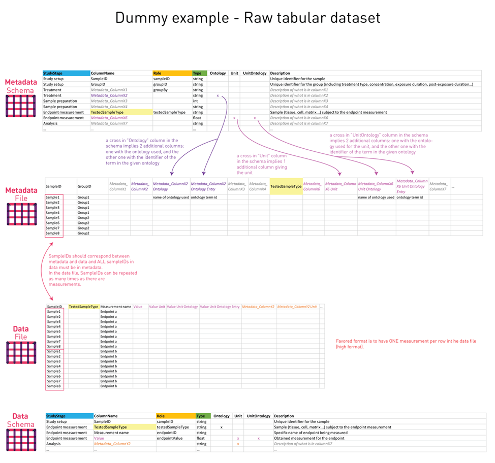 Dummy_Example_Raw_Data_Tabular